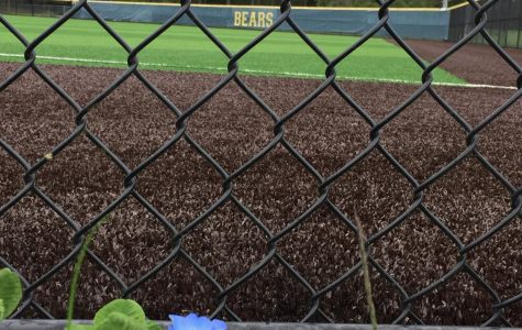 Overlooking the back fence of the baseball field where Varsity, JV, and C-Team play and practice, at Tahoma High School in Maple Valley, Washington.